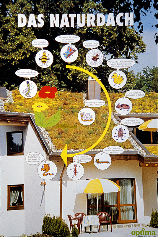 Nature Roof planner poster, 1985