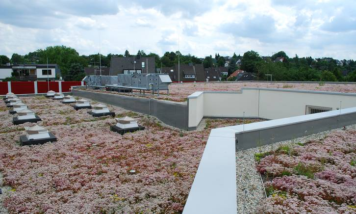 Meander Fkm 30 Green Roof Solutions By Optigreen