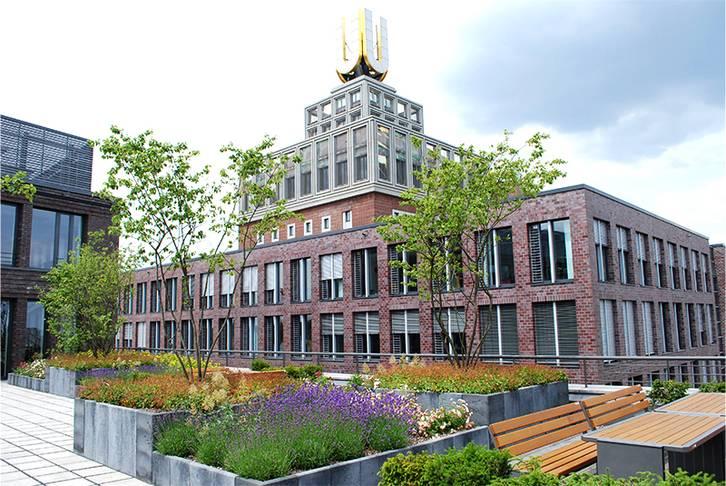 Green roof on office building Dortmund, 2010
