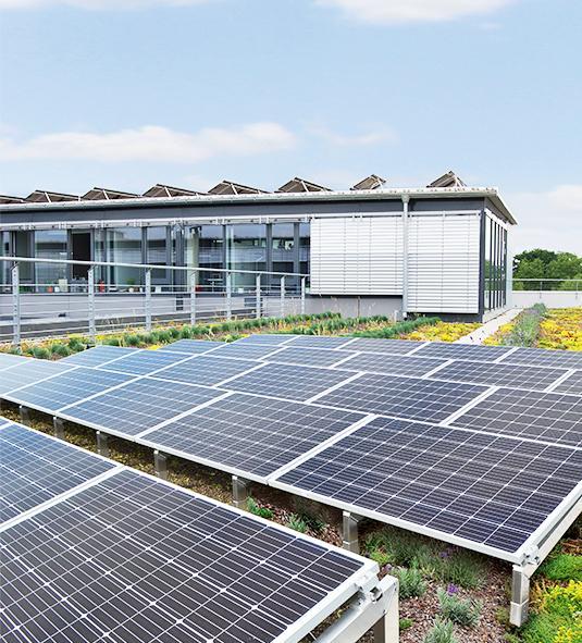 OPTIGRÜN Solar FKD
